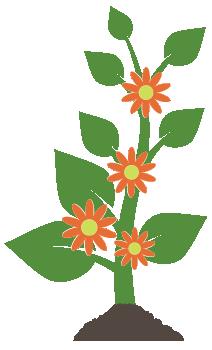 06flowering